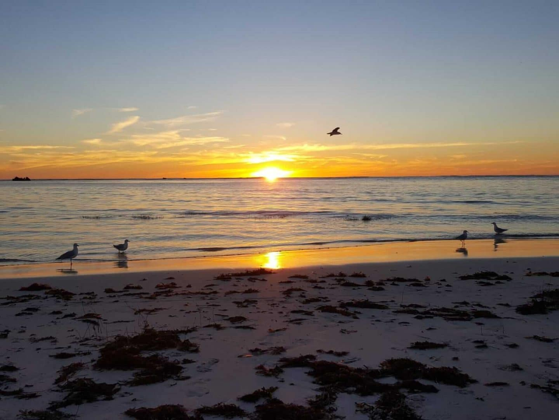 australien-sonnenuntergang