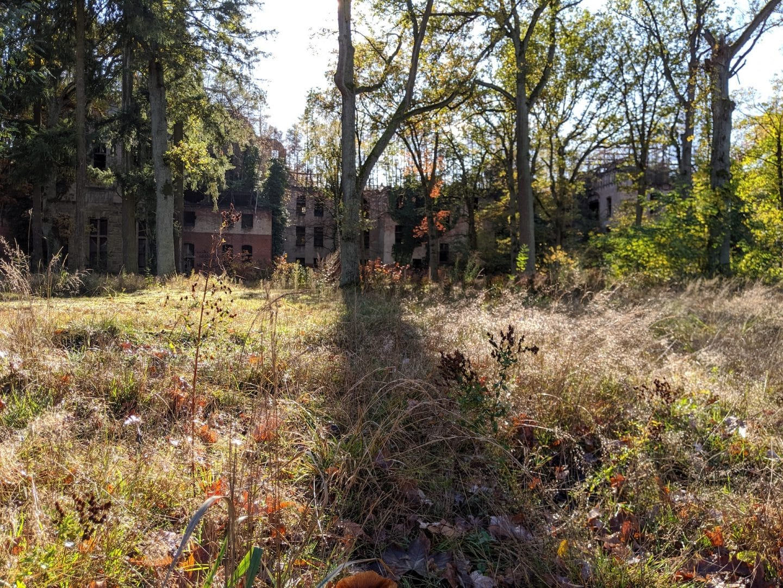 herbstreise-havelregion-baumkronenpfad