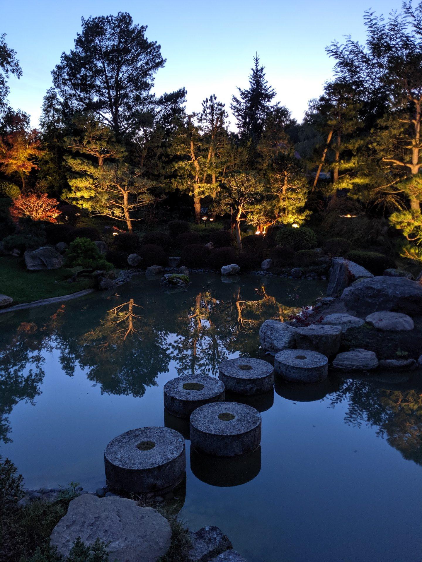 herbstreise-bonsaigarten